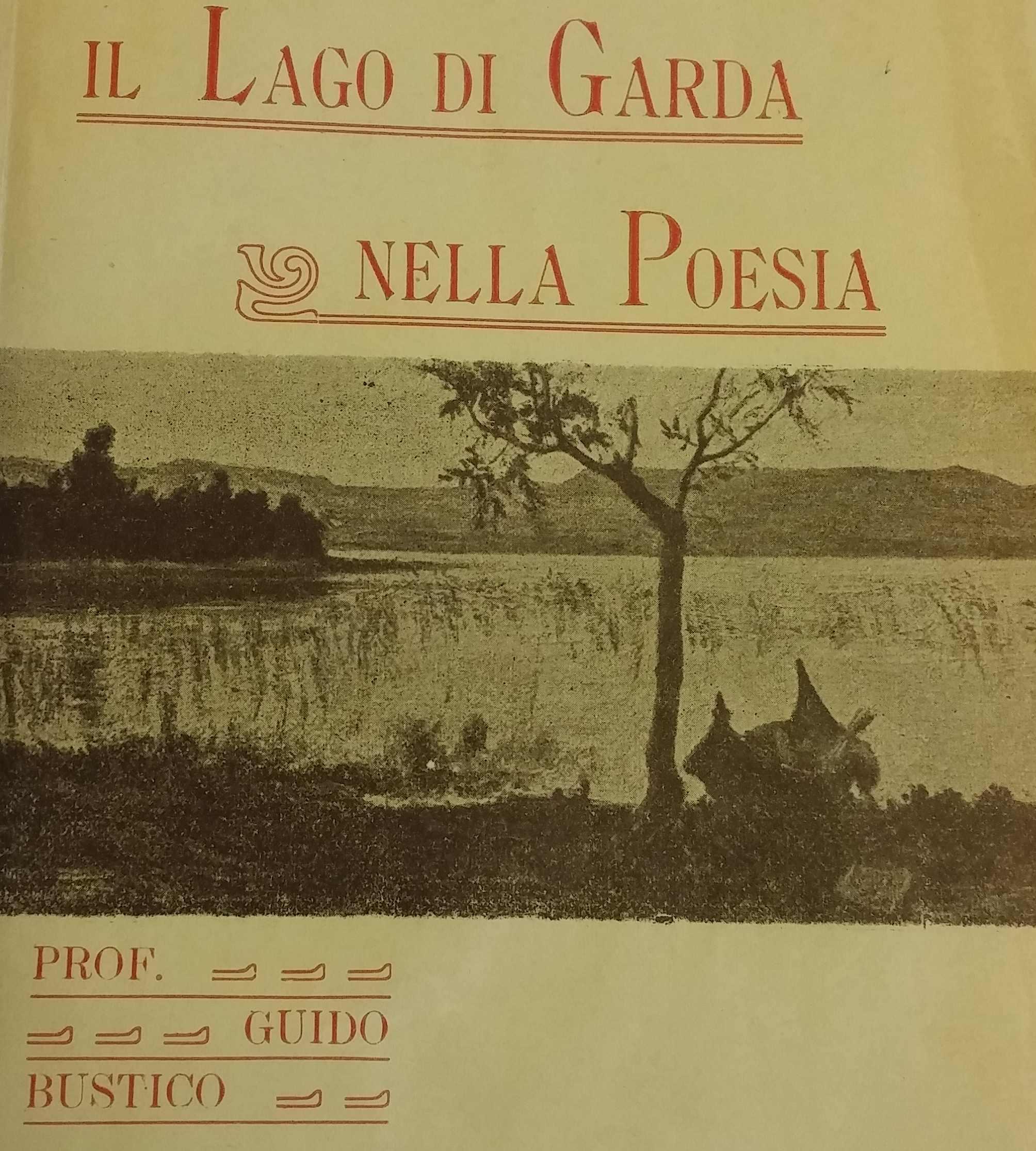 Guido Bustico
